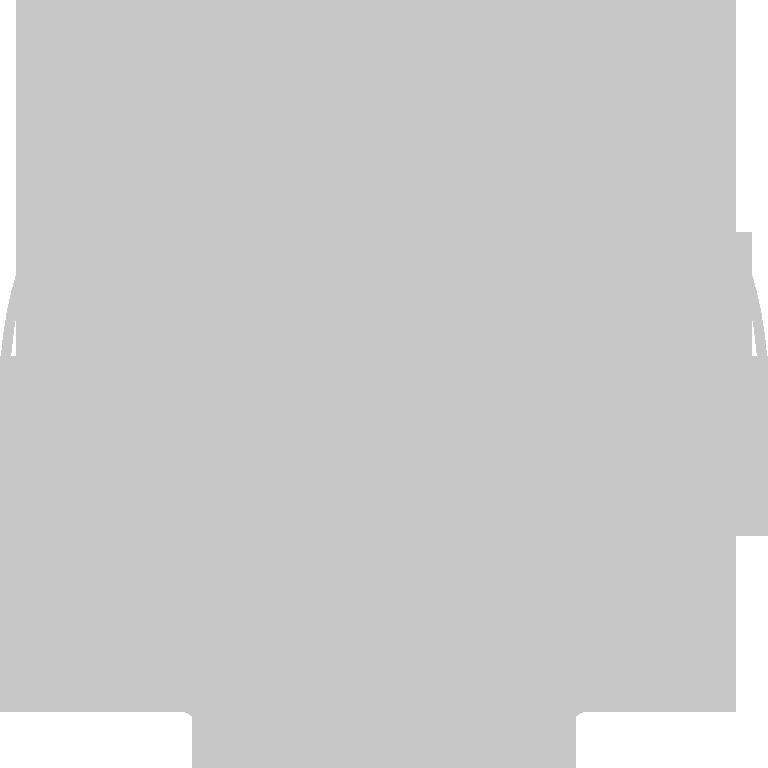 Logo Wild Style